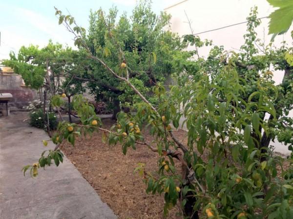 Casa indipendente in vendita a Lecce, Torre Rinalda, Con giardino, 50 mq - Foto 9