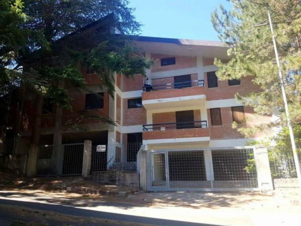 Appartamento in vendita a Spezzano della Sila, Camigliatello Silano, Arredato, con giardino, 45 mq - Foto 1