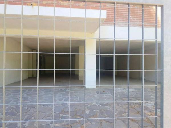 Appartamento in vendita a Spezzano della Sila, Camigliatello Silano, Arredato, con giardino, 45 mq - Foto 4