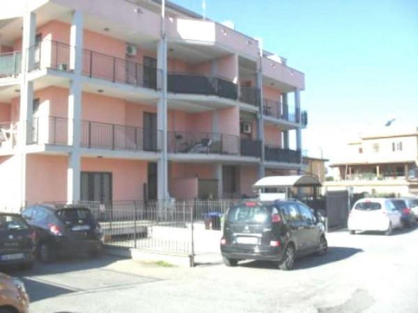 Appartamento in vendita a Roma, Tor Vergata, 60 mq - Foto 4