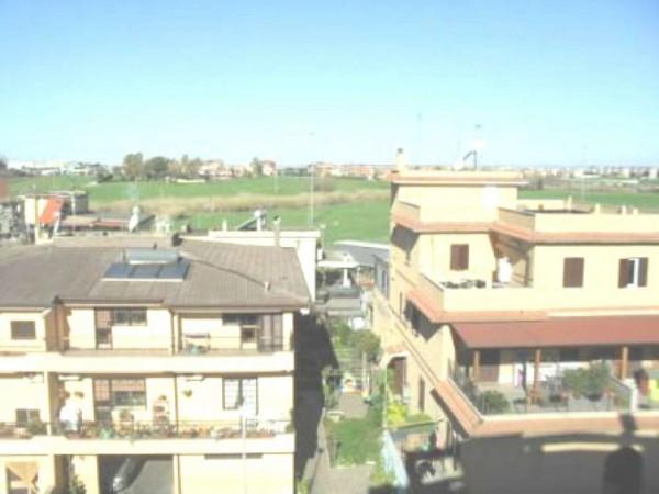 Appartamento in vendita a Roma, Tor Vergata, 60 mq - Foto 10