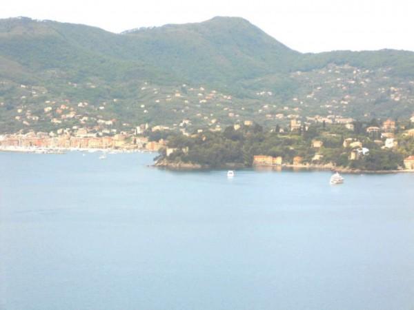 Villa in vendita a Zoagli, Marina Di Bardi, Con giardino, 400 mq - Foto 19