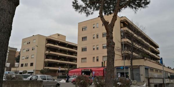 Appartamento in vendita a Ciampino, Morena, Con giardino, 70 mq - Foto 25