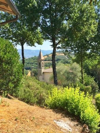 Casa indipendente in vendita a Monterchi, Borgacciano, Con giardino, 500 mq