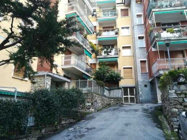 Appartamento in affitto a Camogli, Arredato, con giardino, 25 mq - Foto 8