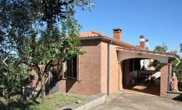 Rustico/Casale in vendita a Viterbo, Arredato, con giardino, 65 mq