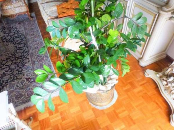 Appartamento in vendita a Torino, Centro Europa, Con giardino, 130 mq - Foto 6