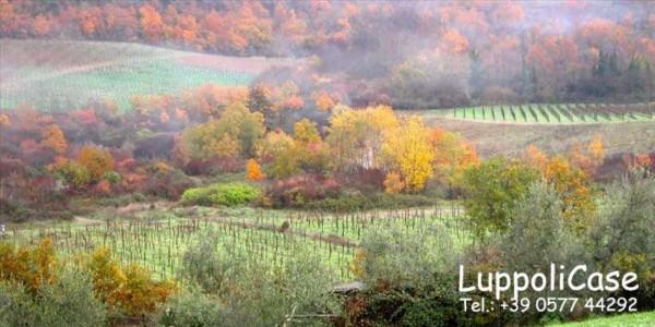 Villa in vendita a Castelnuovo Berardenga, Arredato, con giardino, 900 mq - Foto 27