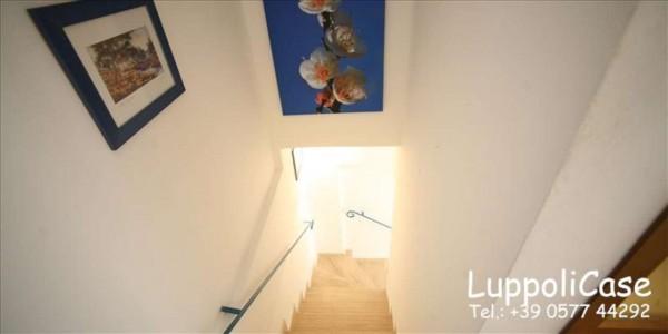 Appartamento in affitto a Siena, Arredato, 40 mq - Foto 5