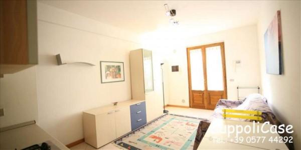 Appartamento in affitto a Siena, Arredato, 40 mq - Foto 4