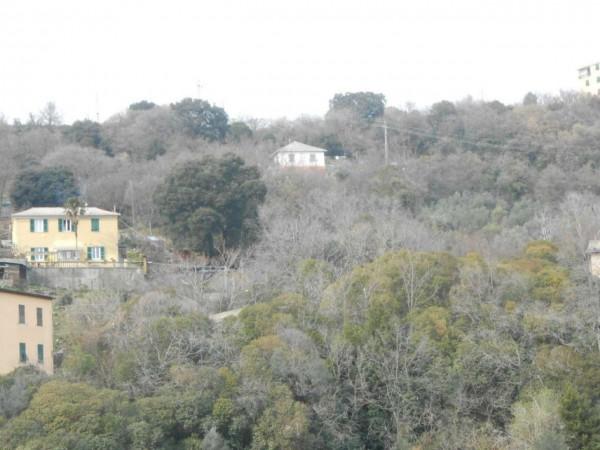 Appartamento in affitto a Genova, Adiacenze Monoblocco, Arredato, con giardino, 77 mq - Foto 3