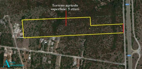 Locale Commerciale  in vendita a Statte, Agricola, 50000 mq
