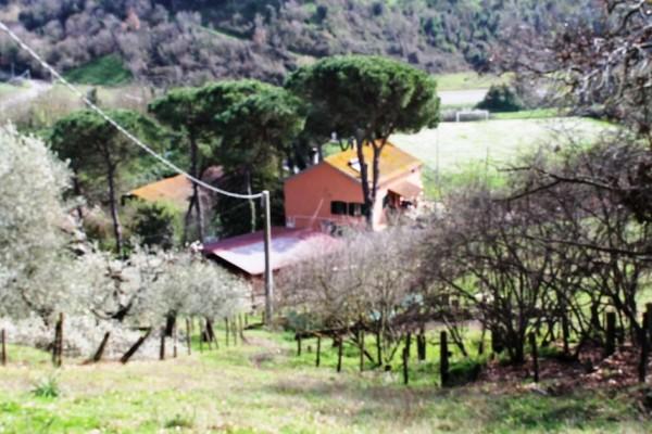 Casa indipendente in vendita a Roma, Tragliata, 260 mq