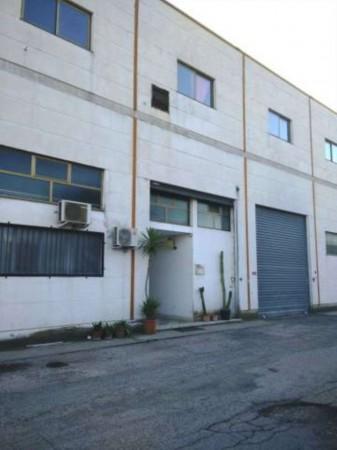 Appartamento in vendita a Capena, 63 mq - Foto 5