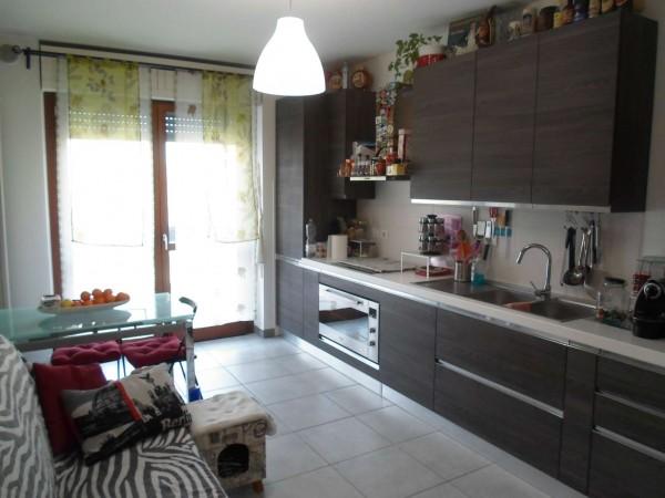 Appartamento in affitto a Torino, Borgo Vittoria, Con giardino, 50 mq