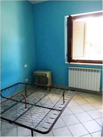 Casa indipendente in vendita a Vetralla, Con giardino, 60 mq - Foto 9
