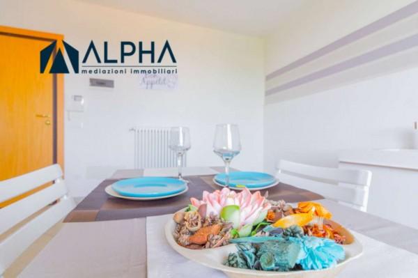Appartamento in vendita a Bertinoro, 97 mq