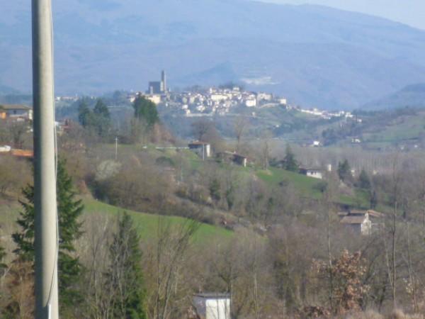 Locale Commerciale  in vendita a Castel San Niccolò, Campagna Panoramica, Con giardino, 350 mq - Foto 6