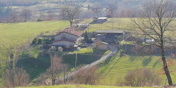 Locale Commerciale  in vendita a Castel San Niccolò, Campagna Panoramica, Con giardino, 350 mq - Foto 1