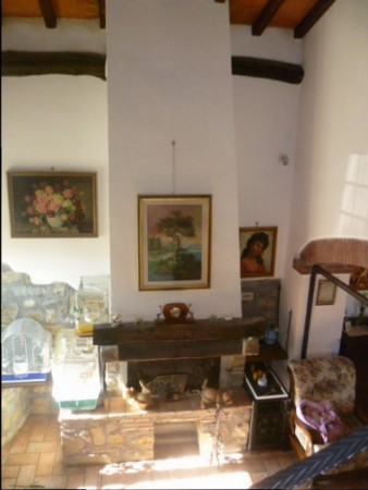 Locale Commerciale  in vendita a Castel San Niccolò, Campagna Panoramica, Con giardino, 350 mq - Foto 9