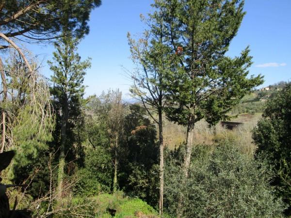 Appartamento in vendita a Impruneta, Con giardino, 145 mq - Foto 20