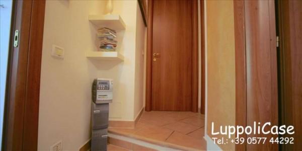 Appartamento in vendita a Monteriggioni, Con giardino, 49 mq - Foto 11