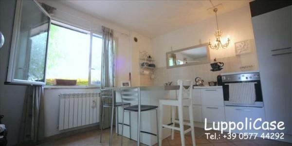 Appartamento in vendita a Monteriggioni, Con giardino, 49 mq - Foto 4