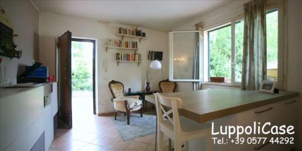 Appartamento in vendita a Monteriggioni, Con giardino, 49 mq - Foto 9