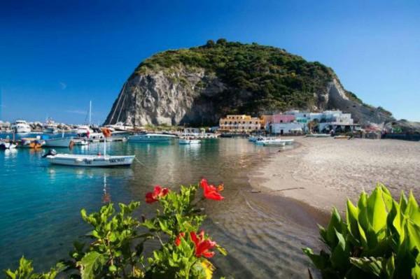 Locale Commerciale  in vendita a Ischia, Con giardino, 4000 mq - Foto 10