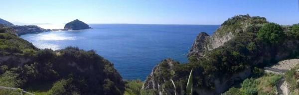 Locale Commerciale  in vendita a Ischia, Con giardino, 4000 mq - Foto 1