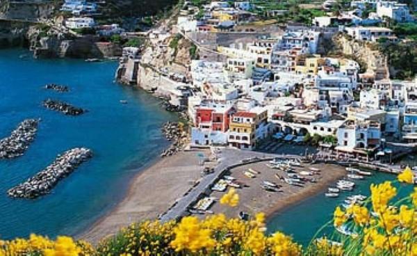 Locale Commerciale  in vendita a Ischia, Con giardino, 4000 mq - Foto 3