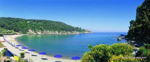 Locale Commerciale  in vendita a Ischia, Con giardino, 4000 mq - Foto 9