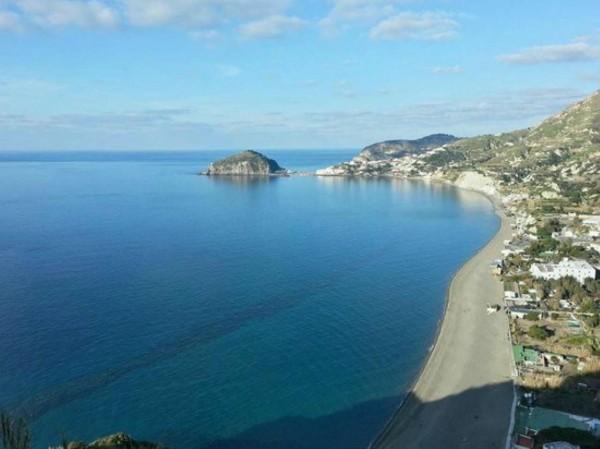 Locale Commerciale  in vendita a Ischia, Con giardino, 4000 mq - Foto 8