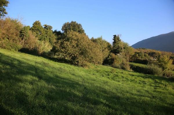 Appartamento in vendita a Giuliano di Roma, Le Prata, Con giardino, 680 mq - Foto 8