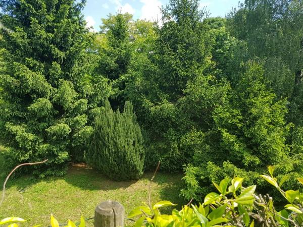 Villa in vendita a Bregano, Arredato, con giardino, 145 mq - Foto 4