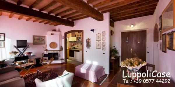 Appartamento in affitto a Castelnuovo Berardenga, Arredato, 40 mq - Foto 13