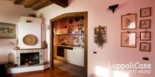 Appartamento in affitto a Castelnuovo Berardenga, Arredato, 40 mq - Foto 11