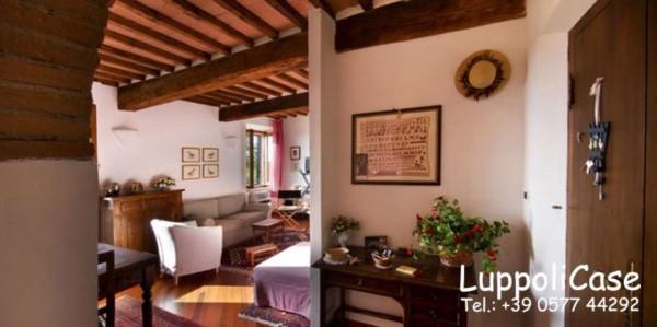 Appartamento in affitto a Castelnuovo Berardenga, Arredato, 40 mq - Foto 14