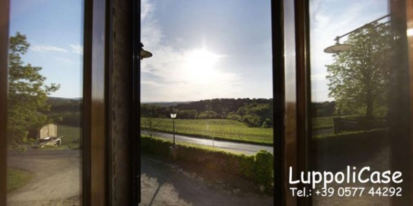 Appartamento in affitto a Castelnuovo Berardenga, Arredato, 40 mq - Foto 5