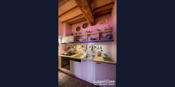 Appartamento in affitto a Castelnuovo Berardenga, Arredato, 40 mq - Foto 10