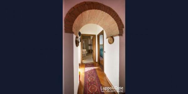 Appartamento in affitto a Castelnuovo Berardenga, Arredato, 40 mq - Foto 3