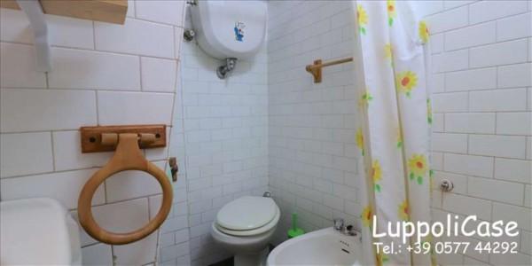 Appartamento in affitto a Siena, Arredato, 35 mq - Foto 4