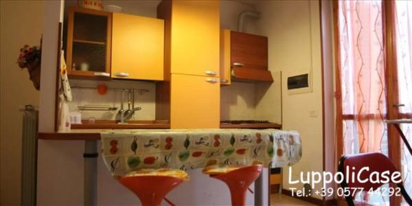 Appartamento in vendita a Castelnuovo Berardenga, 40 mq - Foto 4