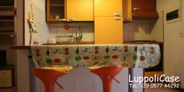 Appartamento in vendita a Castelnuovo Berardenga, 40 mq - Foto 6