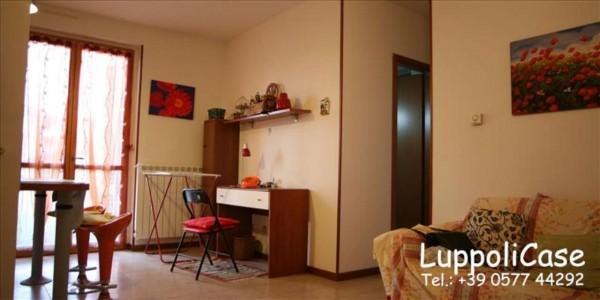 Appartamento in vendita a Castelnuovo Berardenga, 40 mq