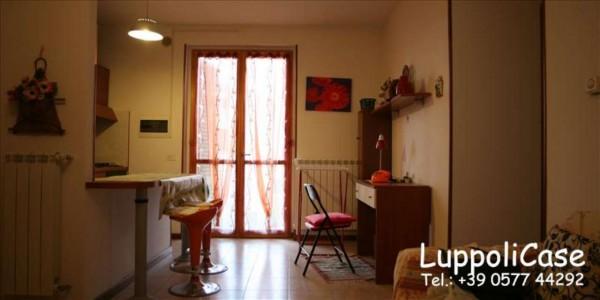 Appartamento in vendita a Castelnuovo Berardenga, 40 mq - Foto 2
