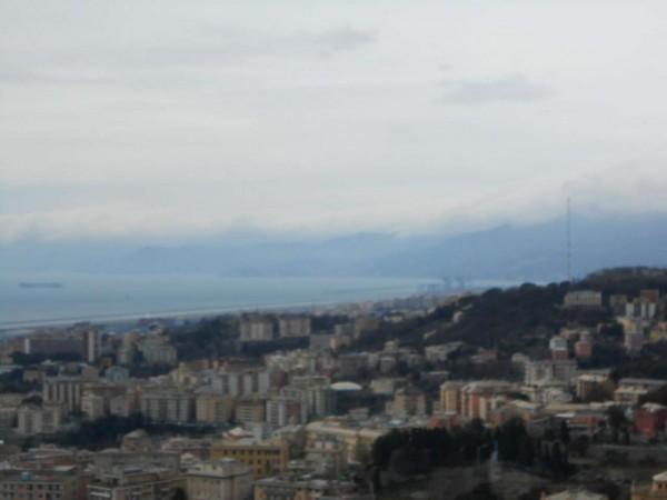 Appartamento in vendita a Genova, Adiacenze Via Piaggio, Con giardino, 117 mq - Foto 8
