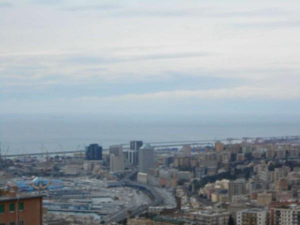 Appartamento in vendita a Genova, Adiacenze Via Piaggio, Con giardino, 117 mq - Foto 13
