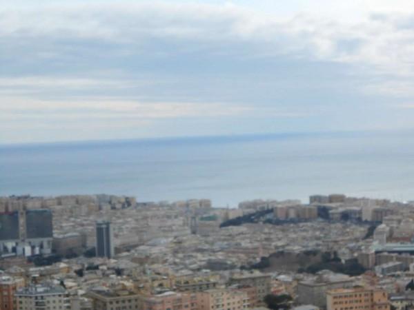 Appartamento in vendita a Genova, Adiacenze Via Piaggio, Con giardino, 117 mq - Foto 14