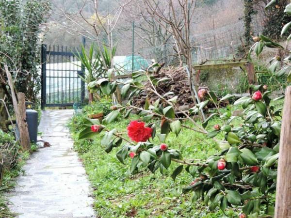 Rustico/Casale in vendita a Rapallo, San Pietro, Con giardino, 250 mq